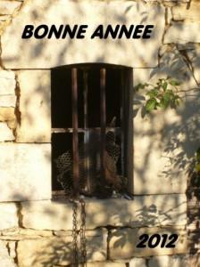 Meilleurs Voeux Bonne-Ann%C3%A9e-2012-224x300